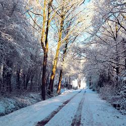 Winters landweggetje 2