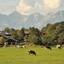 Landschap Oostenrijk