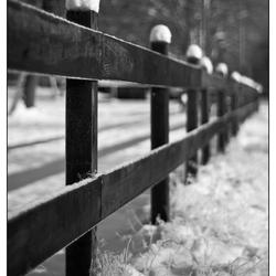 Sneeuwhoedjes