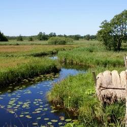 Omgeving Giethoorn