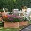 P1120759 Toscana garden  Kwekerij vd Haak 24 aug 2020