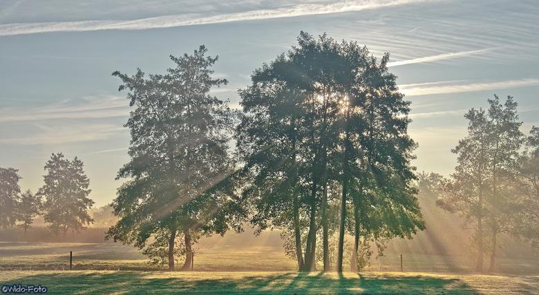 Ochtendzonnetje in de herfst... - `s Morgens in ons dorp Grootegast