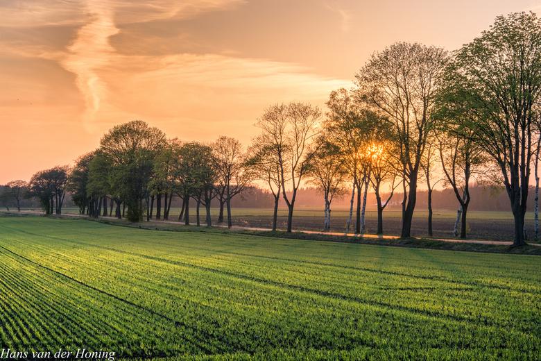 Mooi Drenthe - Gouden licht over het Drentse landschap
