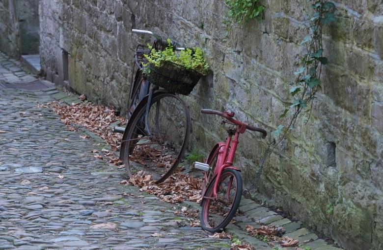 Bikes in Belgium - geen
