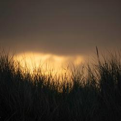 Zonsopkomst achter de duinen van Texel