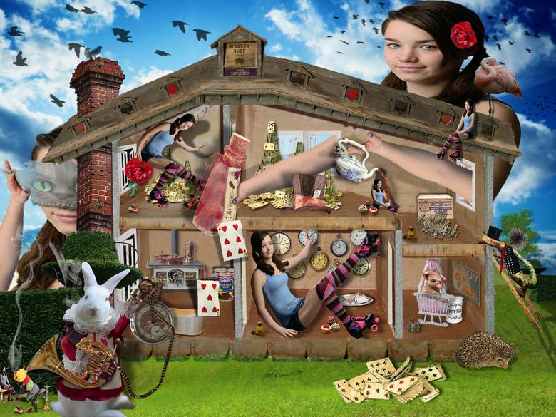 Bewerking: Alice, who the f#@& is Alice ? - De avonturen van Alice in Wonderland.<br /> Achter de spiegel en wat Alice daar aantrof.<br /> Lewis Car