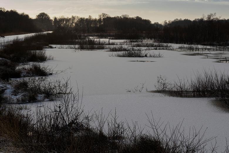 Winter at Bargerveen - De voorspellingen zouden ongeveer dit moeten worden . . . ik ben benieuwd!!!<br /> Gemaakt met de Edge 50