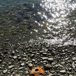 Rusting in low tide