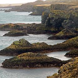 IJsland 84