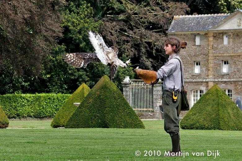 hebbes - Deze foto heb ik gemaakt tijdens een roofvogel demonstratie in Bretagne.