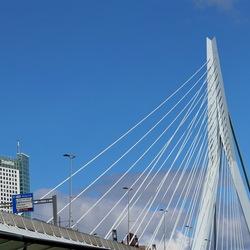 Erasmusbrug Rotterdam.