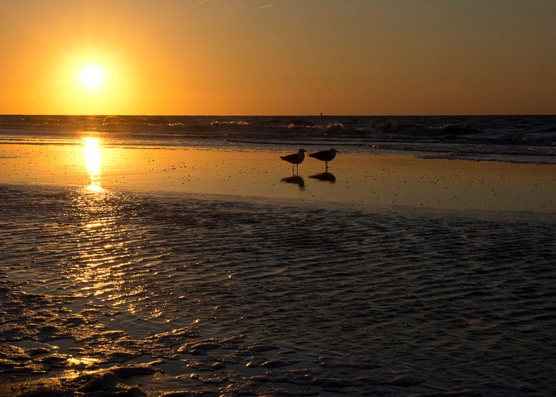 Zonsondergang aan zee - Zonsondergang in Renesse Zeeland