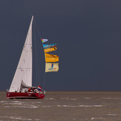 Sail Delfzijl