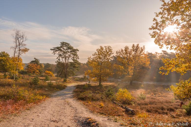 Brunssummerheide herfst - De Brunssummerheide tijdens een prachtige sfeervolle herfstochtend.<br /> <br /> Bedankt voor jullie fijne reacties.