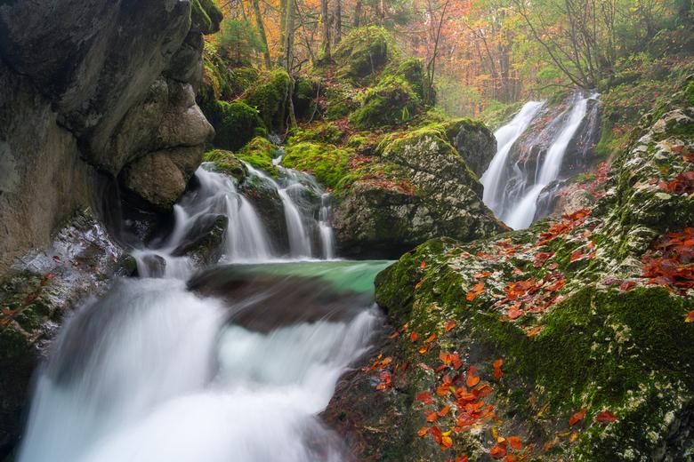 Autumn falls  - Een prachtige serie aan kleine watervallen gelegen in een bos in Slovenië