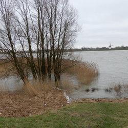 Hoogwater langs de dijk bij Schoonhoven