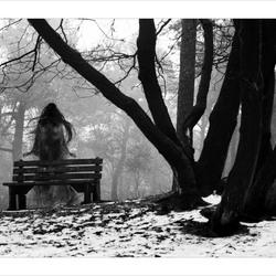 siren of the woods