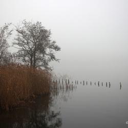 Mist-Botshol