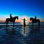 Paardenmeisjes