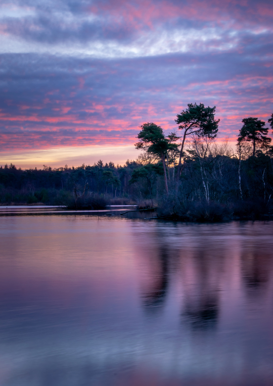 Zonsopkomst Oisterwijkse Vennen - Paarse lucht - Zonsopkomst bij de Oisterwijkse Vennen. Die ochtend was er een prachtig mooie paarse lucht.