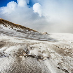 Sunny Snowstorm