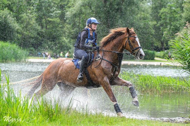 Spetters! - Vandaag bij Eventing Zuid Holland geweest. Genoten van alle paarden en hun ruiters. Prachtig om te zien en diep respect voor mens en dier.