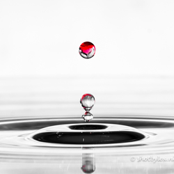 The red drop