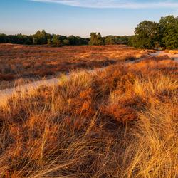 Zonsondergang bij een bruin oranje gekleurde natuur
