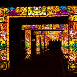 China Lights
