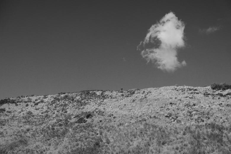 Zeeland - Duinen - Een man op één van de hoogste duinen van Zeeland nabij Valkenisse.<br /> <br /> Deze foto komt het best tot zijn recht als u hem