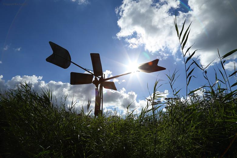 Here comes the Sun - Molentje in de Wieden (Weerribben) nabij Giethoorn.<br /> Vanuit puntertje langzaam voorbijvarend en geschoten op het moment dat