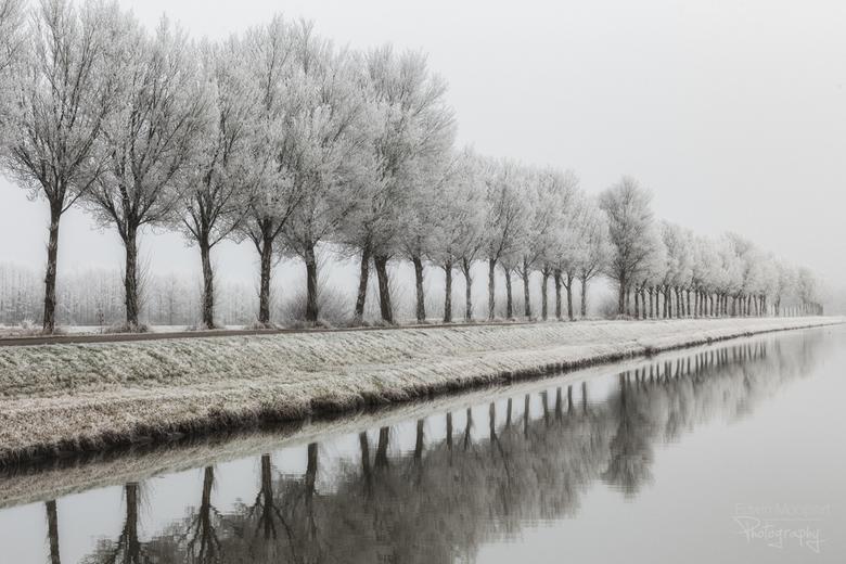White world - Het wat prachtig laatst met al het rijp aan de bomen.<br /> Hopelijk krijgen we nog een herkansing, want ik had veels te weinig tijd nu