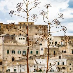Matera in Puglia, Italië