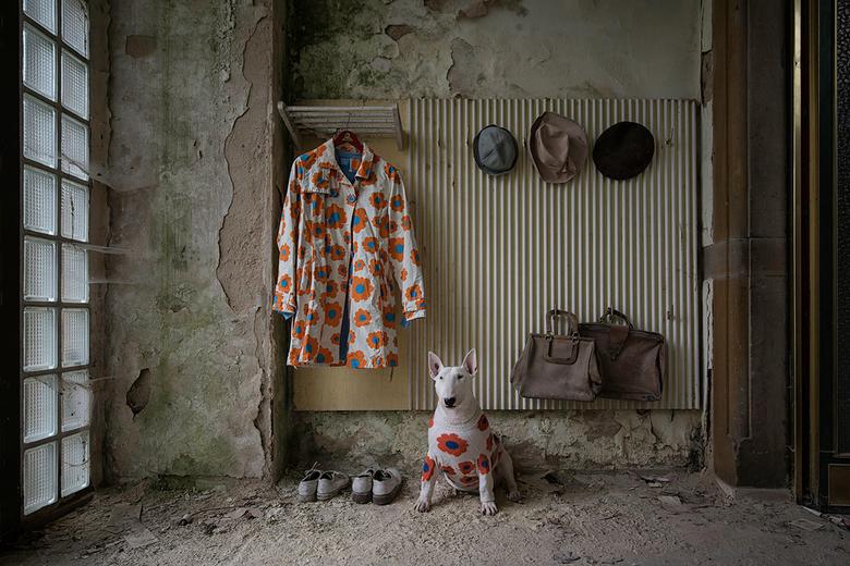 the coat -