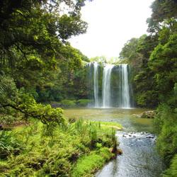 Whangarei Falls, Nieuw Zeeland