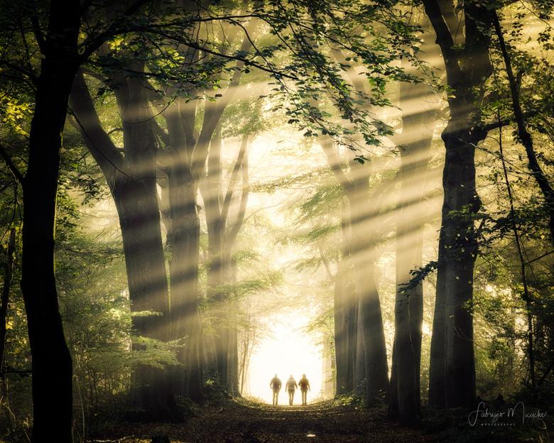 magic walking