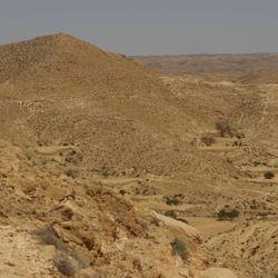 Steenwoestijn