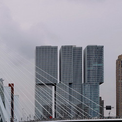 Rotterdam 51.