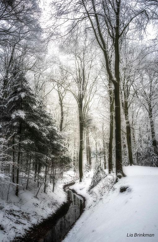 Een winterse dag
