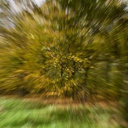 rushing into autumn