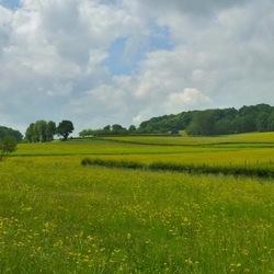 Mijn Limburgs Land