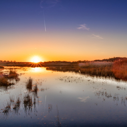 Sunset in the Dutch Dunes