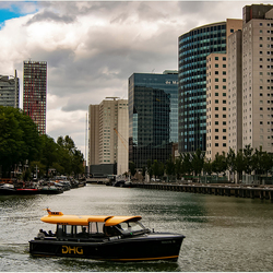 Rotterdam 20