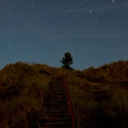 trap naar de sterren