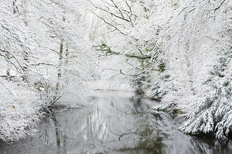 Winter wonderland - Gisteren deze foto genomen in het Stadspark, Groningen.