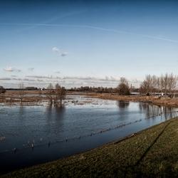 Hoogwater Waal - januari 2012
