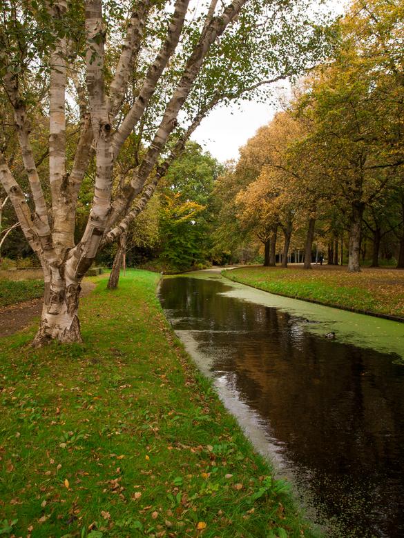 Herfst, Zuiderpark - Herfst in het Zuiderpark, Den Haag