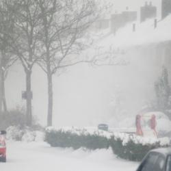 Wind en sneeuw in Bedum