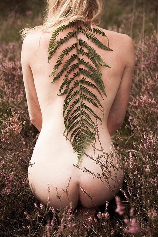 """Lady Feathers - Beeld uit een serie in opdracht voor """"The Green Gallery"""""""