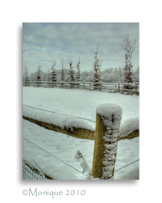 Heimwee?? - Ik heb hier toch al minstens een week geen sneeuw gezien. Hebben jullie al heimwee?<br /> Ik niet, laat die lente nu maar snel komen!!<br
